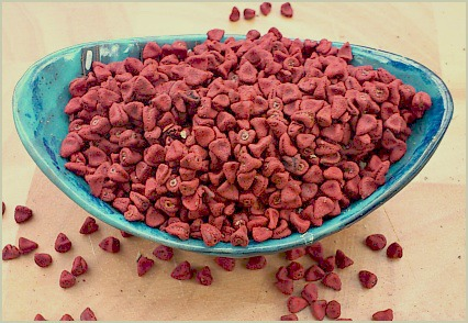 Picture of annatto seeds